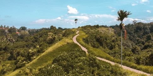 Campuhan Ridge Walk in Ubud, Bali, Indonesia