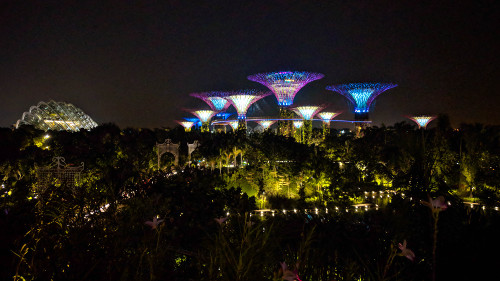 Singapore Opera in the Gardens at Night